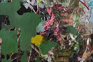Artists - Sophia Schama
