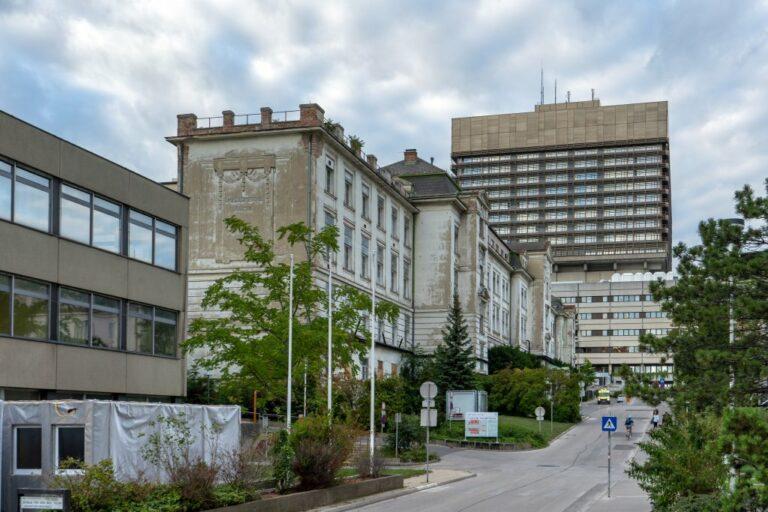 I. Medizinische Klinik und AKH-Neubau, Wien