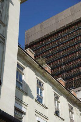 historische Klinik und Neubau, Wiener AKH