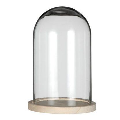 Glazen stolp - 17 cm diameter, 25 cm hoog op een houten voetje.