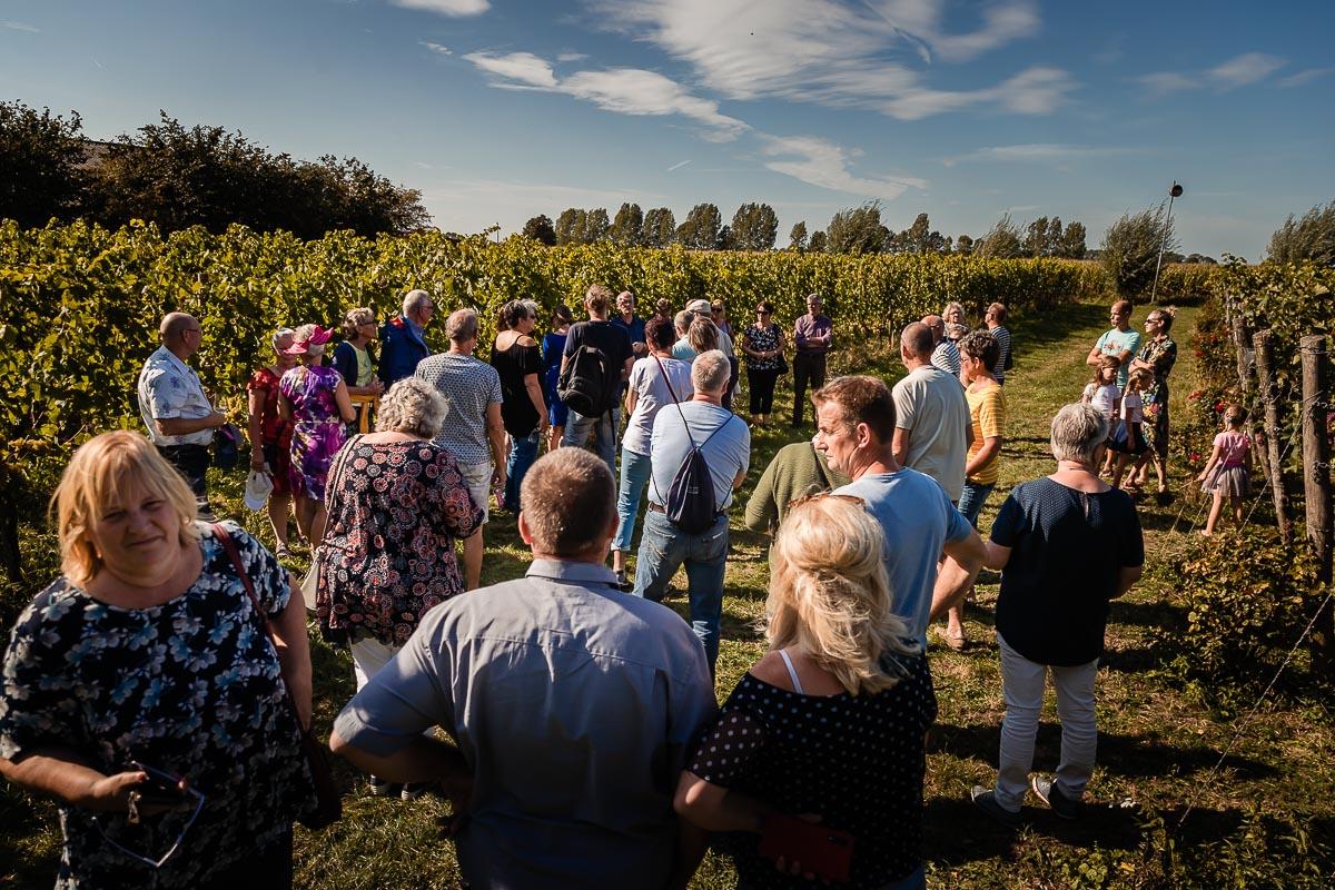 Home-Wijngoed-Montferland-Kwaliteitswijn-van-Achterhoekse-bodem-rondleiding