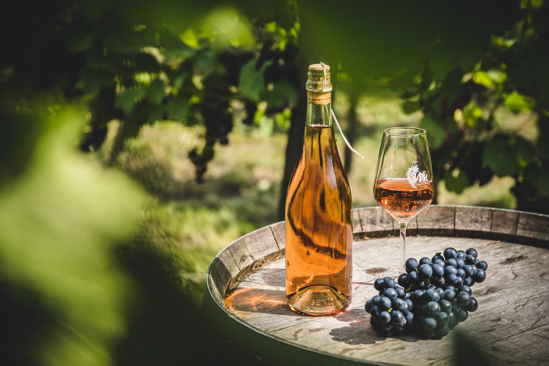 Wijngoed-Montferland-Kwaliteitswijn-van-Achterhoekse-bodem
