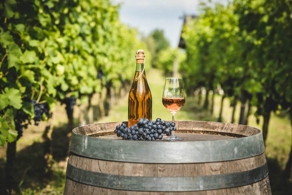 Activiteiten-Wijngoed-Montferland-Kwaliteitswijn-van-Achterhoekse-bodem