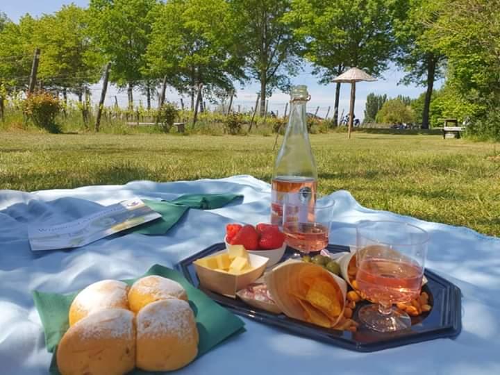 Picknick-op-wijngoed-montferland-oerlegoed-achterhoek