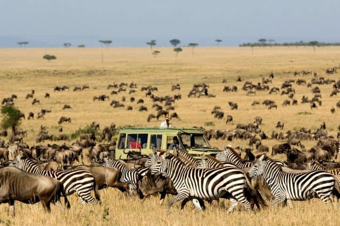 Viaggio fotografico Tanzania <ul> Photo Migration (North)