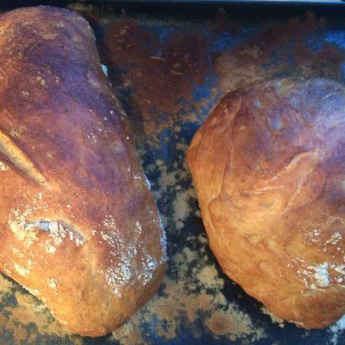 Bread, dough and batter, Ciabatta fresh from oven photo: ©️Nel Brouwer-van den Bergh
