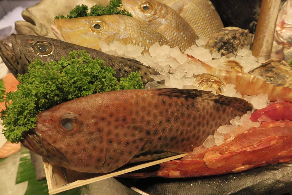 Keeping fish fresh photo: ©️Nel Brouwer-van den Bergh