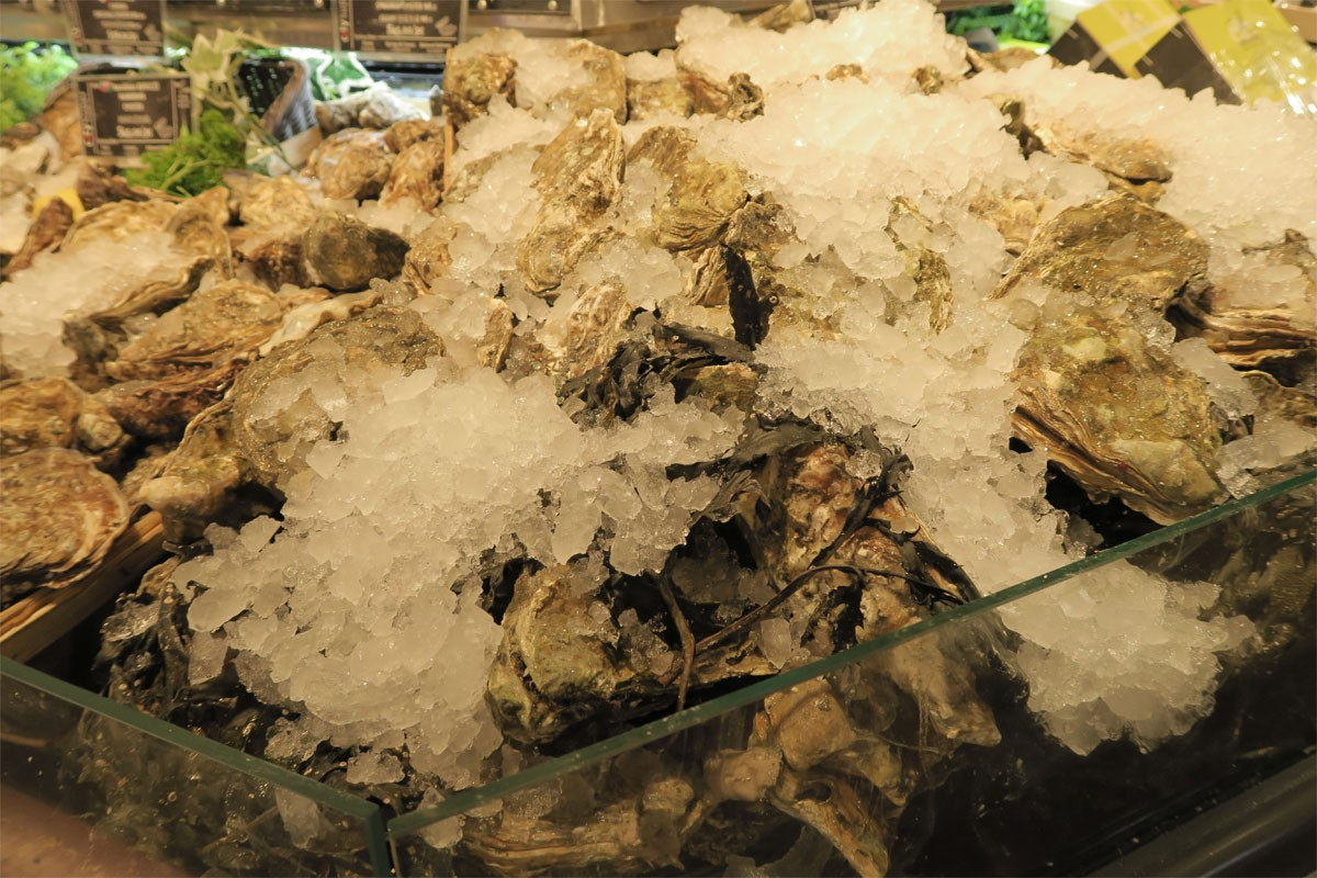 Keeping oysters fresh photo: ©️Nel Brouwer-van den Bergh