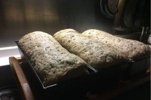 multi-grain-and-seed loafs just before going in the oven photo: ©️Nel Brouwer-van den Bergh