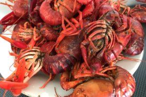 briefly cooked crayfish ©️ Nel Brouwer-van den Bergh
