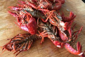 briefly cooked crayfish cut in half ©️ Nel Brouwer-van den Bergh