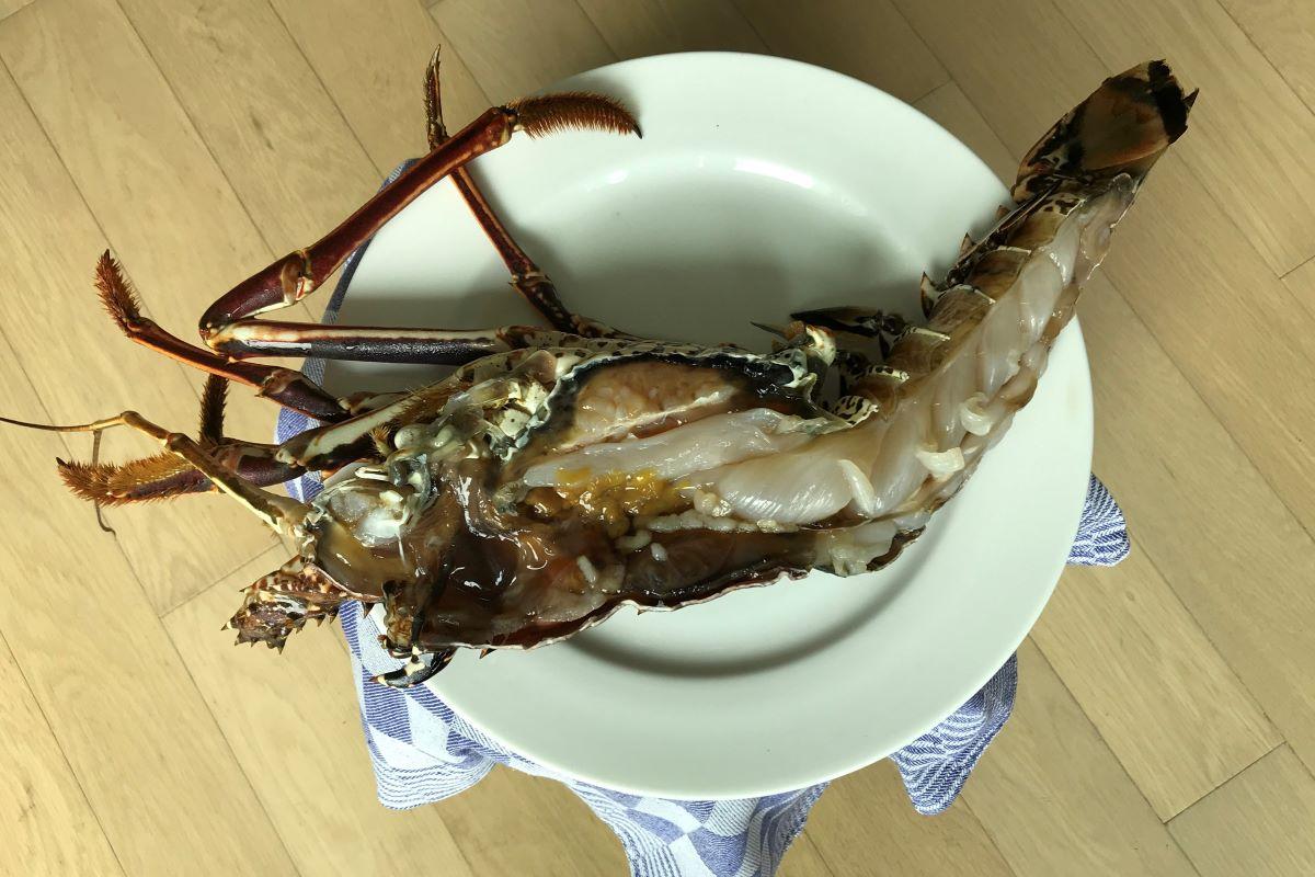 Lobster as basis for lobster bisque ©️ Nel Brouwer-van den Bergh