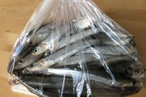 fresh anchovies from the market ©️ Nel Brouwer-van den Bergh