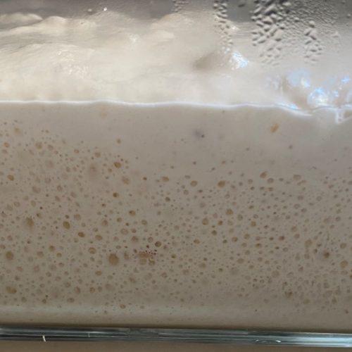 Sourdough barm ©️ Nel Brouwer-van den Bergh