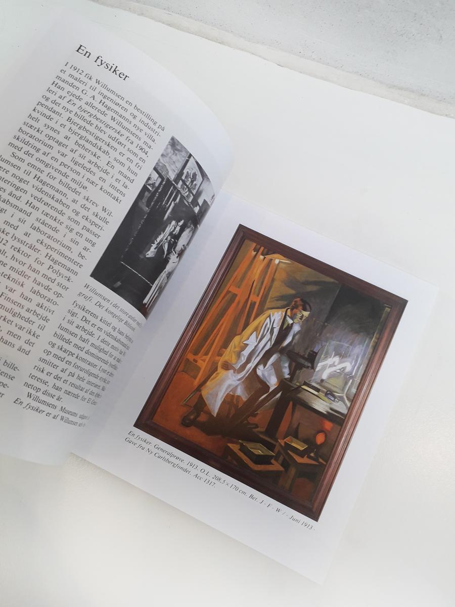Catalogue Book Willumsens Museum English Book
