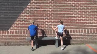 4. Box Steps