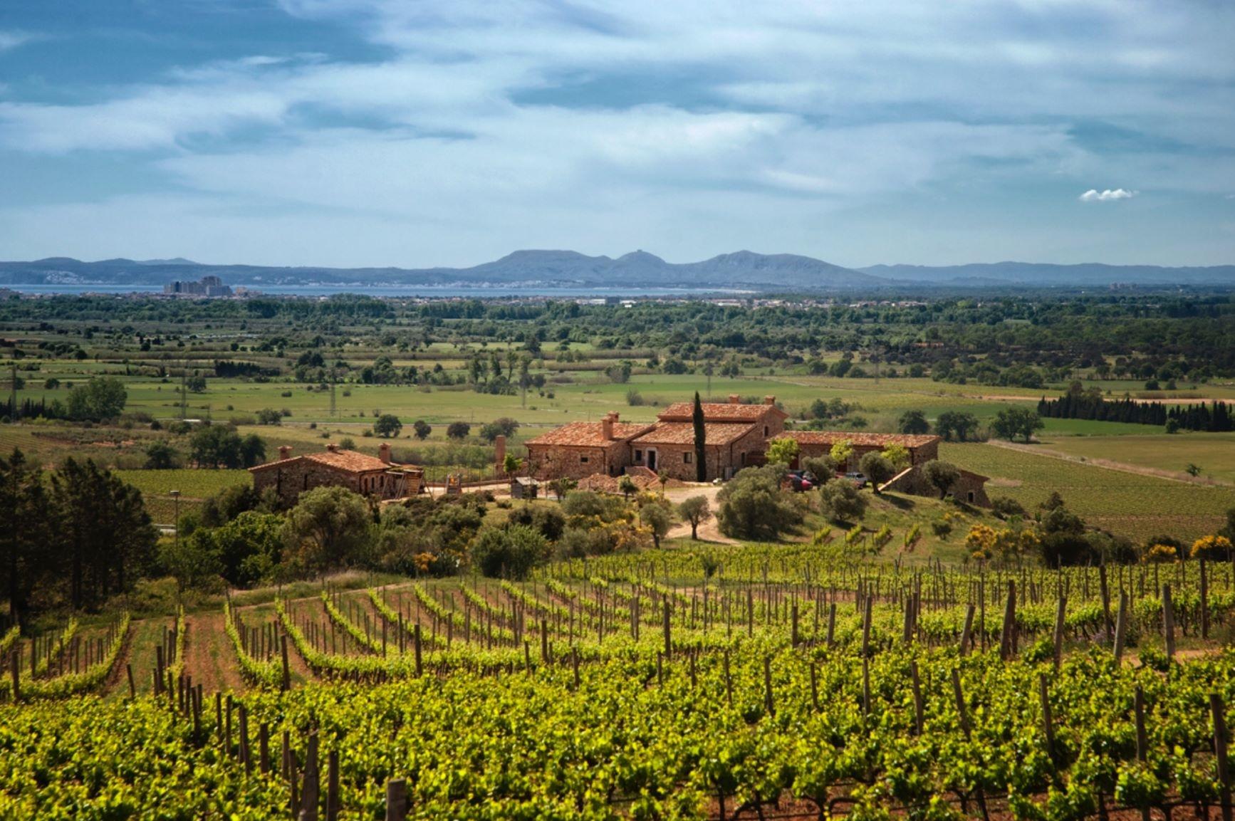 Vores spanske vinhus Espelt Cellers