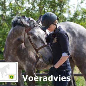 Voeradvies-paarden