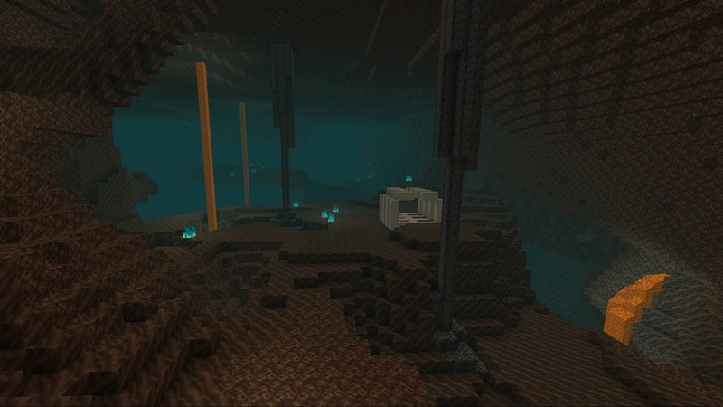 A new Nether biome