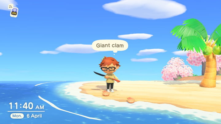Animal Crossing Giant Clams