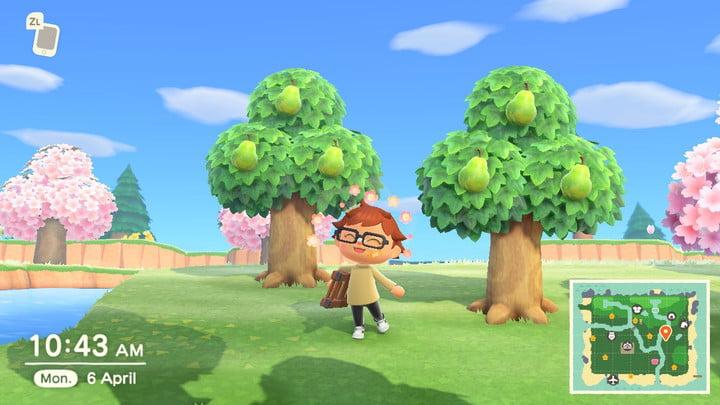 Animal Crossing non-native fruit
