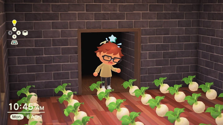 Animal Crossing turnip market