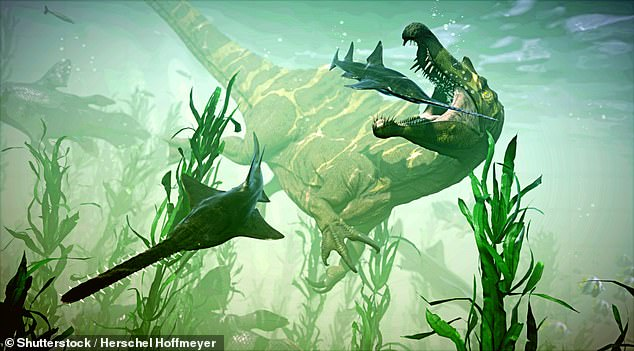 A rendering of Spinosaurus hunting a group of sawfish. The discovery of a Spinosaurus tail, first reported in April, bolstered the theory the fearsome predator spent most of its time in the river