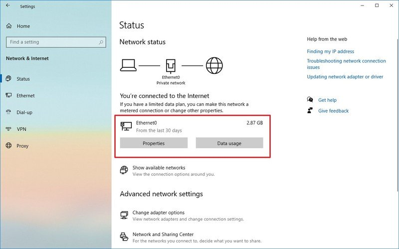 Windows 10 Status settings with active connection