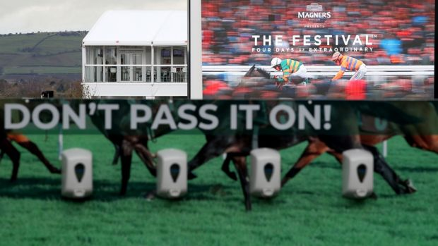 A view of hand sanitisers in place at the Cheltenham festival. Photograph: Dan Sheridan/Inpho