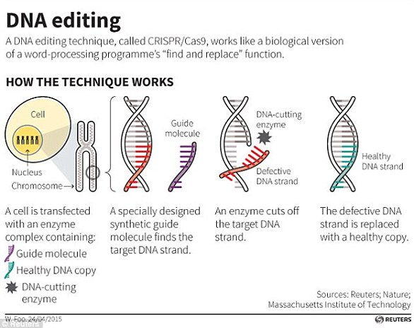 The CRISPR/Cas9 technique uses tags which identify the location of the mutation, and an enzyme, which acts as tiny scissors, to cut DNA in a precise place, allowing small portions of a gene to be removed