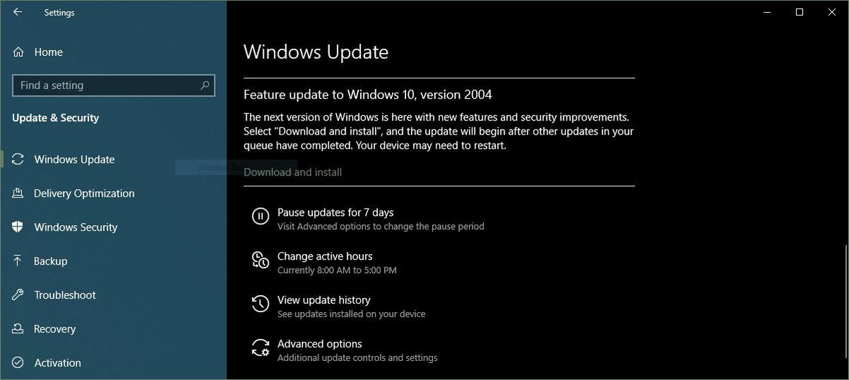 Windows download and install 2004