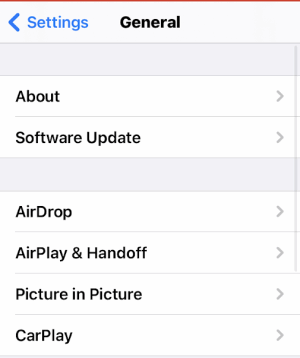 Now Pause The FaceTime on iOS 14 and iPadOS 14