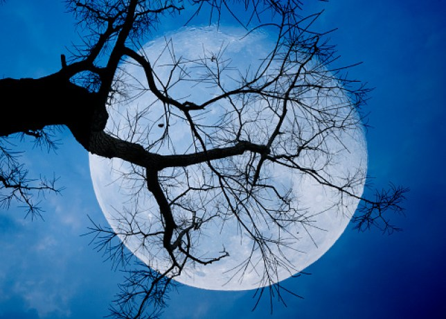 This year's Harvest Moon is happening on October 1 (Credits: Getty Images)