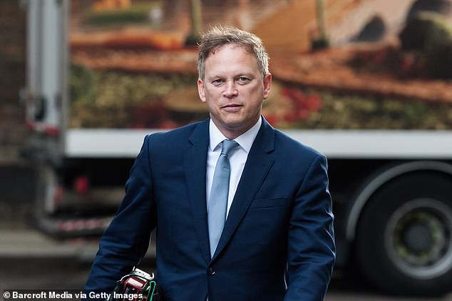 Transport Secretary Grant Shapps told yesterday's conference that officials are exploring a variety of options to boost air travel