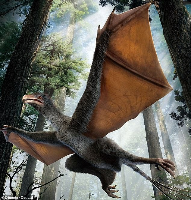 The new dinosaur, named Yi qi (shown above in the artists reconstruction), had unusual bristle-like feathers and bat-like wings that were covered in a membrane. The dinosaur may have been able to glide and flap