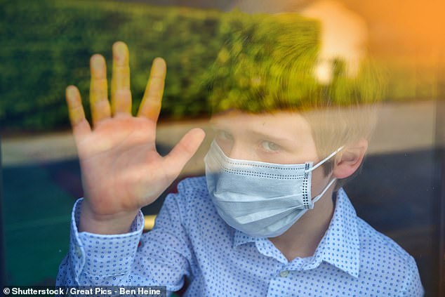 Stay-at-home and quarantine measures have halted the social interactions which would otherwise expose millions of adolescents to new microbes. It remains to be seen what impact on young people's development this shift will have, the researchers said
