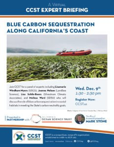 Flyer for Blue Carbon briefing