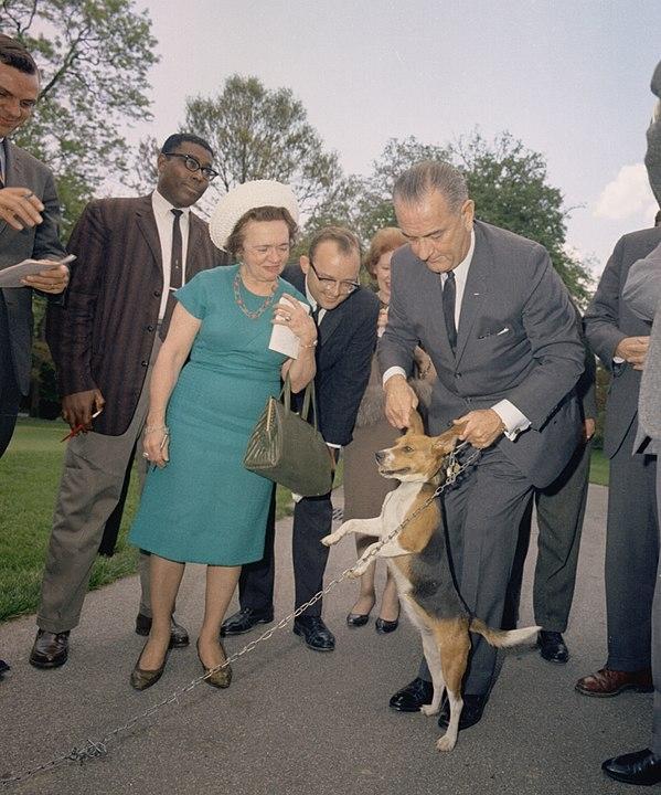 Lyndon Johnson lifting dog by ears