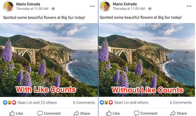 Facebook hidden like counts