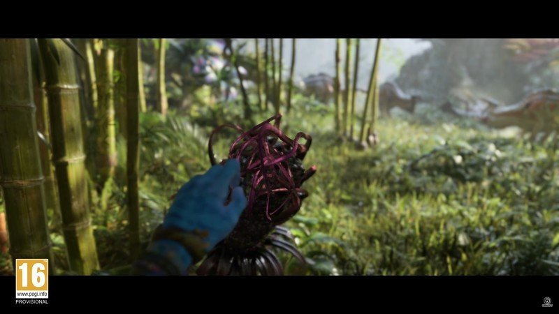 Avatar First Person