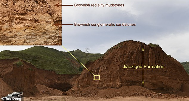 The remains were found within brownish red silty mudstones and sandstones in the Jiaozigou formation in China