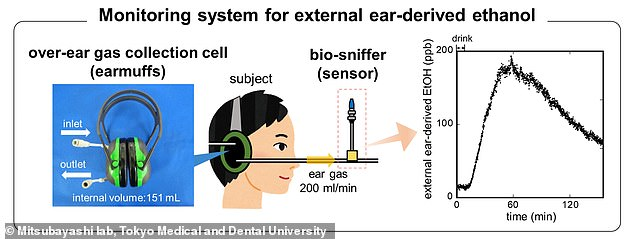 A schematic image of the monitoring system for external ear-derived ethanol that consists of earmuffs and an ethanol vapor sensor (bio-sniffer)