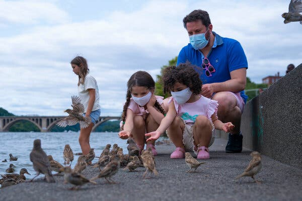 Ali Allawi and his daughters Lana and Mila Allawi wore protective face masks as they fed birds on the Georgetown waterfront during a Sunday afternoon outing in Washington, D.C. last week.