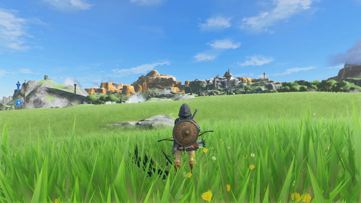 Link standing in a field in Breath of the Wild.