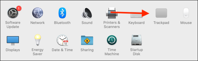 Click on Trackpad from System Preferences