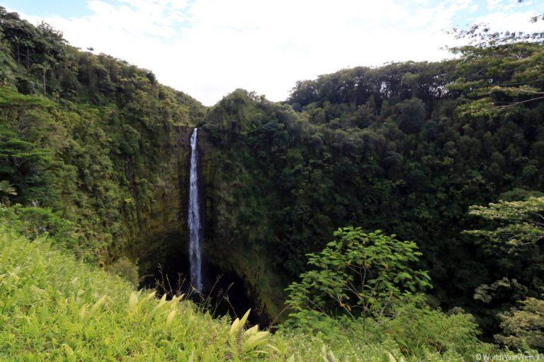 Big Island 194- Akaka Falls State Park