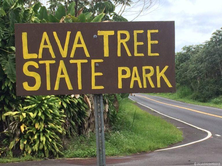 Big Island 203- Lava Tree State Park