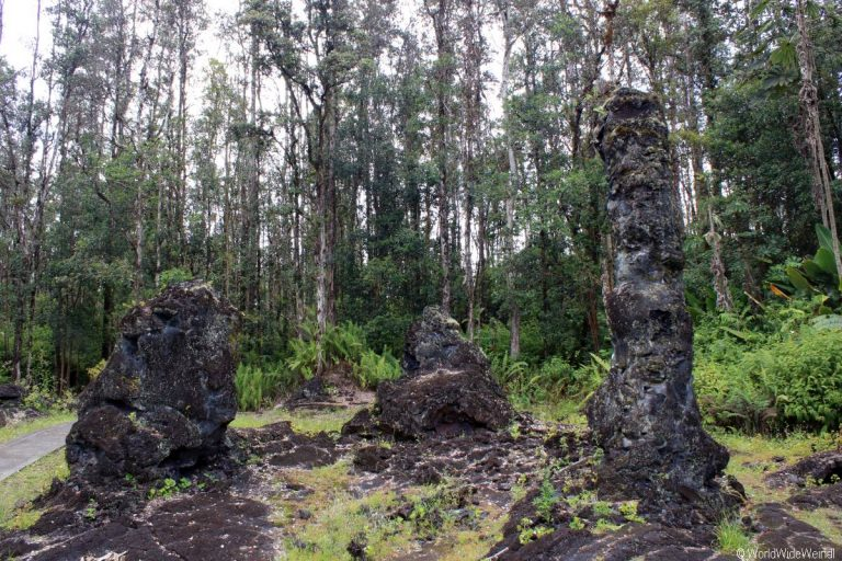 Big Island 215- Lava Tree State Park