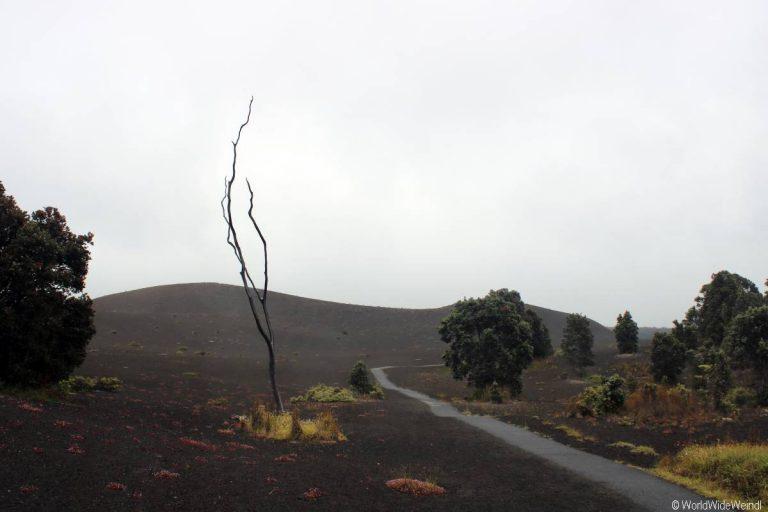 Big Island 250- Volcanos Nationalpark Devestation Trail