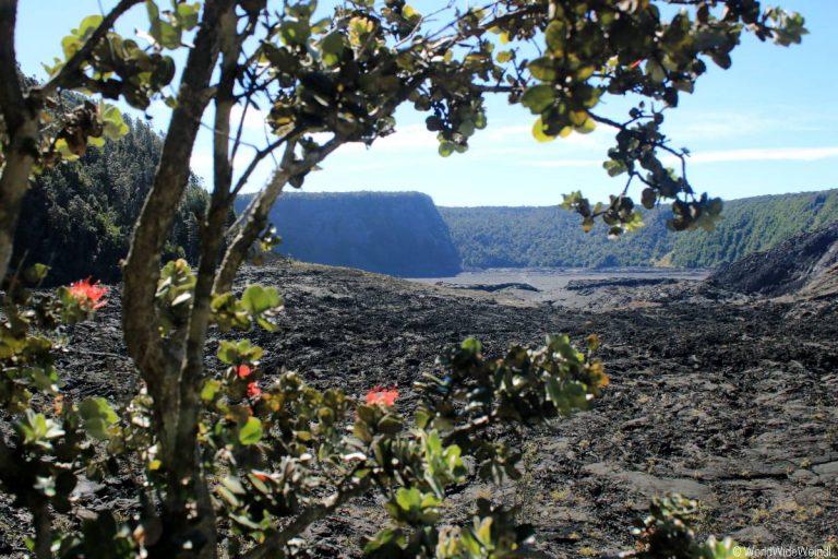 Big Island 490- Kilauea Iki Trail